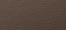 LL DARK Brown 2600x1000 SA 12978