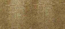 LL Leguan Gold 2600x1000 SA 13478